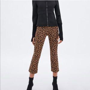 Zara | High Waist Mini Kick Flare Leopard Pants